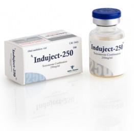 Induject (Сустанон) Alpha Pharma баллон 10 мл (250 мг/1 мл)