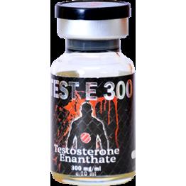 Test E300 (Тестостерон энантат) UFC Pharm баллон 10 мл (300 мг/1 мл)