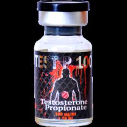 Test P100 (Тестостерон пропионат) UFC Pharm баллон 10 мл (100 мг/1 мл)